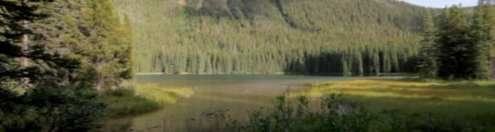 Akamina Lake
