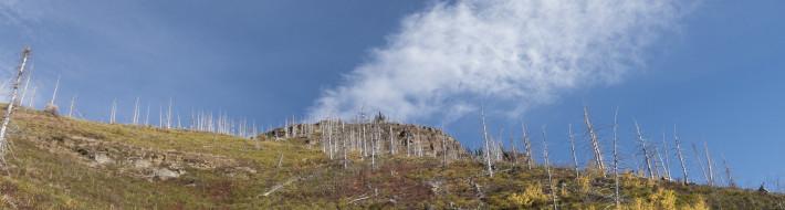 Fall in Glacier